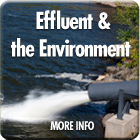 Pollutant Effluent and the Environment